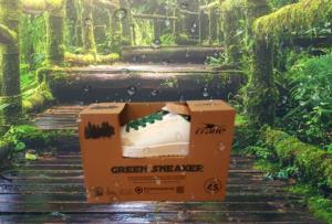 Green Sneaker bei Aldi